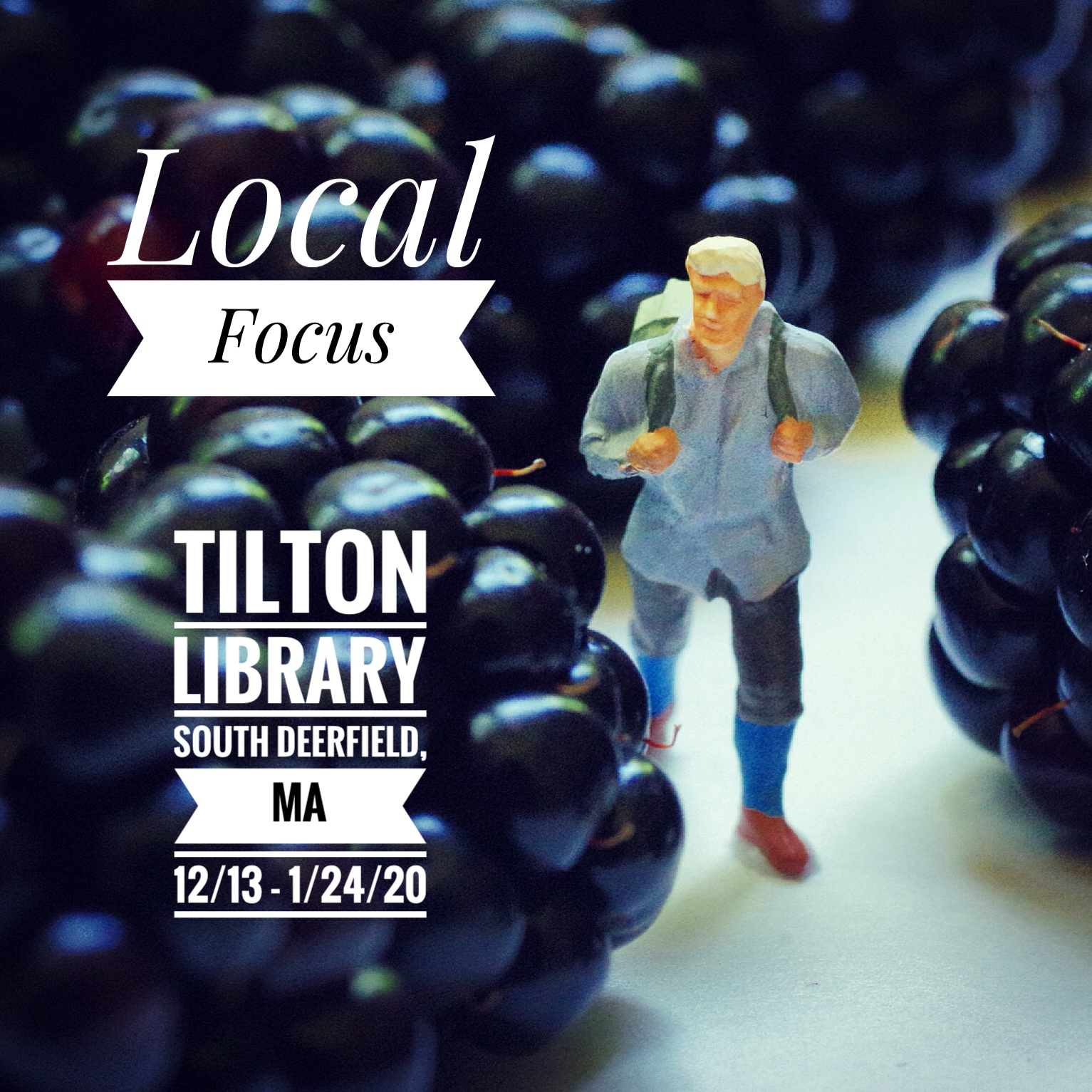 Local Focus At The Tilton Library, South Deerfield, MA