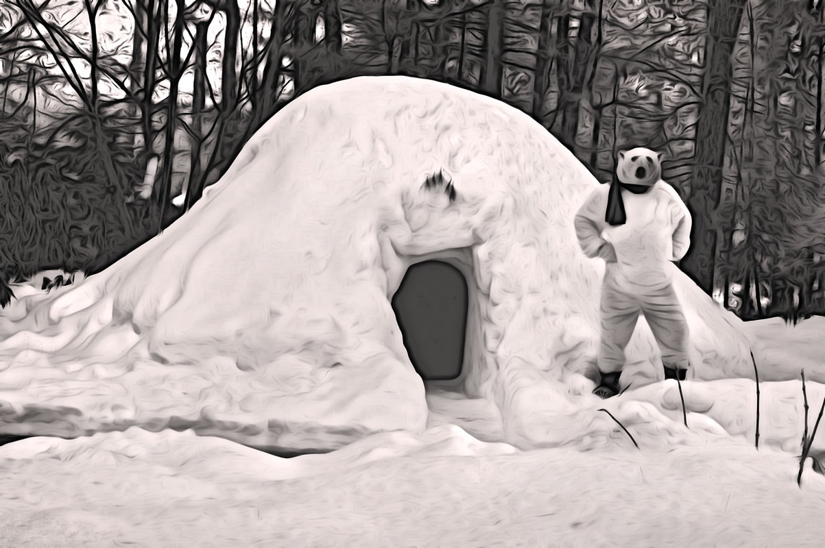 Igloo Guardian