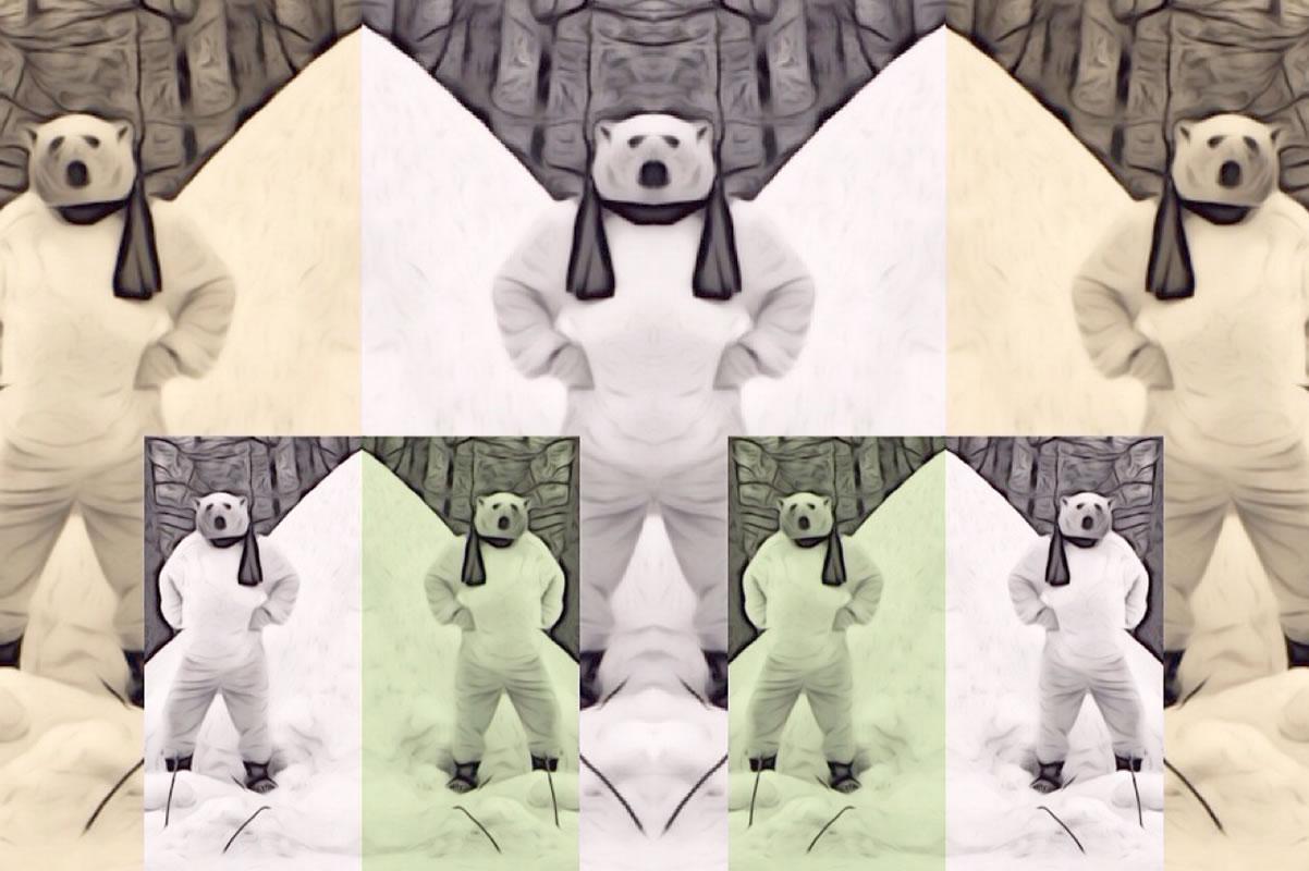 Polar Bear Seven